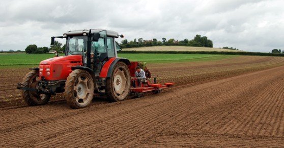 Crops being planted at Broadward Hall Farm, Herefordshire
