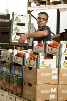 James loading tomatoes onto an order