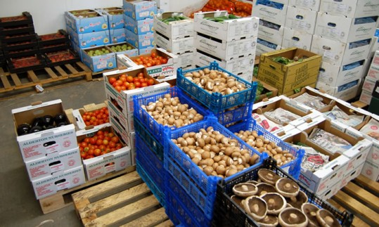 We can supply a wide range of organic produce